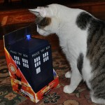Talking TARDIS Cookie Jar