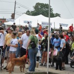 Walk for the Animals