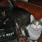 World's Best Cat Litter New Scent Unveiled