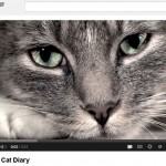 The Sad Cat Diary [video and it not me]