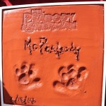 Special Paw-Print Ceremony on Holly-WOOF Blvd