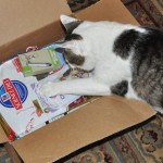 I Gots Klout & Dat Gets Me Perks Like Dis Hills Science Diet Box o Goodies