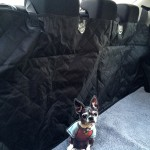 Pet Car Seat Cover Review