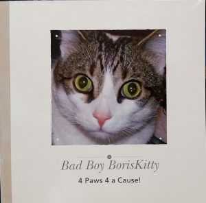 Boris Kitty Book