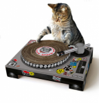 #SCIFIpawty DJ Schedule